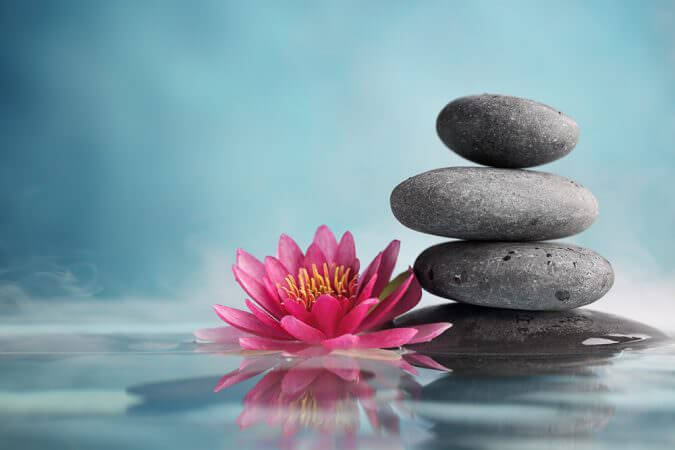 Shale Magazine: De Premier Spa wellness - pink lotus and hot rocks in water