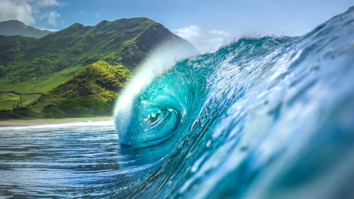 National Ocean Month: 6 Things You Don't Know About the Ocean